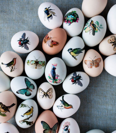 gallery_54eabd81887f7_-_printed-easter-eggs-easter-crafts-0412-p82t1z-xln
